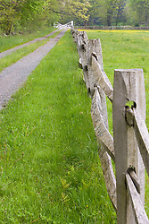 A split rail fence and farm road at the Essex County Greenbelt Association's Julia Bird Reservation in Ipswich, Massachusetts.