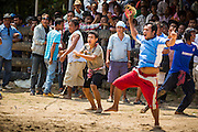 08 FEBRUARY 2014 - PHAWONG, SONGKHLA, THAILAND: Owners of a fighting bull react to their bull's victory in a bullfight in rural Songkhla province, Thailand. Bullfighting is a popular past time in southern Thailand. Hat Yai is the center of Thailand's bullfighting culture. In Thai bullfights, two bulls are placed in an arena and they fight, usually by head butting each other, until one runs away or time is called. Huge amounts of mony are wagered on Thai bullfights - sometimes as much as 2,000,000 Thai Baht ($65,000 US).   PHOTO BY JACK KURTZ