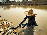 "01 APRIL 2016 - WANG NUEA, LAMPANG, THAILAND: A man throws aside rocks while he was panning for gold in the Mae Wang. Villagers in the Wang Nuea district of Lampang province found gold in the Mae Wang (Wang River) in 2011 after excavation crews dug out sand for a construction project. A subsequent Thai government survey of the river showed ""a fair amount of gold ore,"" but not enough gold to justify commercial mining. Now every year when the river level drops farmers from the district come to the river to pan for gold. Some have been able to add to their family income by 2,000 to 3,000 Baht (about $65 to $100 US) every month. The gold miners work the river bed starting in mid-February and finish up by mid-May depending on the weather. They stop panning when the river level rises from the rains. This year the Thai government is predicting a serious drought which may allow miners to work longer into the summer. The 2016 drought has lowered the water level so much that the river is dry in most places and people can only pan for gold in a very short stretch of the river.      PHOTO BY JACK KURTZ"