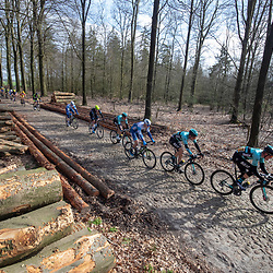23-03-2019: Wielrennen: Drentse Dorpenomloop: Assen<br />-wielrennen - Assen - Drenthe - KNWU<br />Piotr Havik