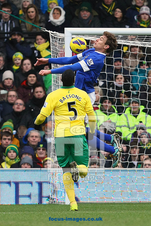 Picture by Paul Chesterton/Focus Images Ltd +44 7904 640267.23/02/2013.Sebastien Bassong of Norwich and Nikica Jelavic of Everton in action during the Barclays Premier League match at Carrow Road, Norwich.
