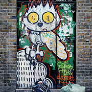 Graffiti door owl rubbish, London, England (July 2007)