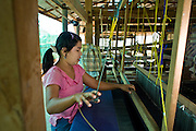"19 FEBRUARY 2008 -- SANGKLABURI, KANCHANABURI, THAILAND: SABAE, a Burmese refugee from the Mon hill tribe, works in the weaving shop at Baan Unrak Children's Home in Sangklaburi, Thailand. Baan Unrak children's home and school, established in 1991 in Sangklaburi, Thailand, gives destitute children and mothers a home and career training for a better future. Baan Unrak, the ""Home of Joy,"" provides basic needs to well over 100 children, and  abandoned mothers. The home is funded by donations and the proceeds from the weaving and sewing shops at the home. The home is a few kilometers from the Burmese border. All of the women and children at the home are refugees from political violence and extreme poverty in Burma, most are Karen hill tribe people, the others are Mon hill tribe people. The home was started in 1991 when Didi Devamala went to Sangklaburi to start an agricultural project. An abandoned wife asked Devmala to help her take care of her child. Devmala took the child in and soon other Burmese women approached her looking for help.    Photo by Jack Kurtz"