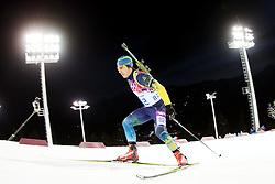 The XXII Winter Olympic Games 2014 in Sotchi, Olympics, Olympische Winterspiele Sotschi 2014<br /> Tobias ARWIDSON (SWE)