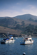 Boats anchored offshore at Two Harbors, Catalina Island, California Coast