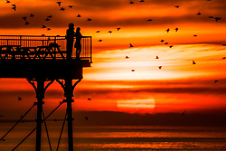 © Licensed to London News Pictures. 24/02/2019. Aberystwyth, UK. The sun sets behind Aberystwyth pier on Cardigan Bay in Wales, silhouettes the people watching as  some of the tens of thousands of starlings fly in to roost for the night on the forest  of cast iron legs underneath the iconic Victorian seaside pier. Photo credit: Keith Morris/LNP