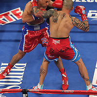 Miguel Cotto of Puerto Rico and Delvin Rodriguez of the Dominican Rebublic square off during their 12-round super welterweight bout at the Amway Center in Orlando, Florida on Saturday, October 5, 2013.  (Photo/Alex Menendez)
