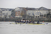 Putney, GREAT BRITAIN,    Bear as they approach Chiswick Pier, during the 2008 Varsity/Oxford University [OUBC] Trial Eights, raced over the championship course. Putney to Mortlake, on the River Thames. Thurs. 11.08.2008 [Mandatory Credit, Peter Spurrier/Intersport-images].Crew.Bear, Bow. Tim FARQUHARSON, 2. Ben ROSENBERGER, 3. Mike VALLI. 4. Alex HEARNE, 6 Tom SOLESBURY, 7 George BRIDGEWATER, Stroke, Ante KUSURI and Cox Adam BARHAMAND. Varsity Boat Race, Rowing Course: River Thames, Championship course, Putney to Mortlake 4.25 Miles,
