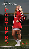 2015 Cheer Senior Banners
