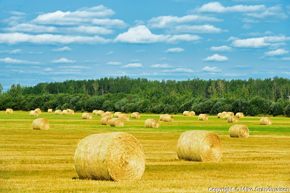Bales and clouds<br />Joussard<br />Alberta<br />Canada