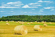 Bales and clouds<br />