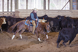 April 30 2017 - Minshall Farm Cutting 2, held at Minshall Farms, Hillsburgh Ontario. The event was put on by the Ontario Cutting Horse Association. Riding in the 5,000 Novice Horse Class is Eric Van Boekel on Love That Dog owned by the rider.