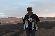 Mongolia in the Gobi desert  Bayanzag  /portrait eleveur ,  dans le desert de Gobi,   Bayan zag - Mongolie