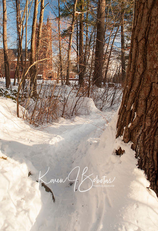 St Paul's School walking trails after a fresh snow.  © 2013 Karen Bobotas Photographer