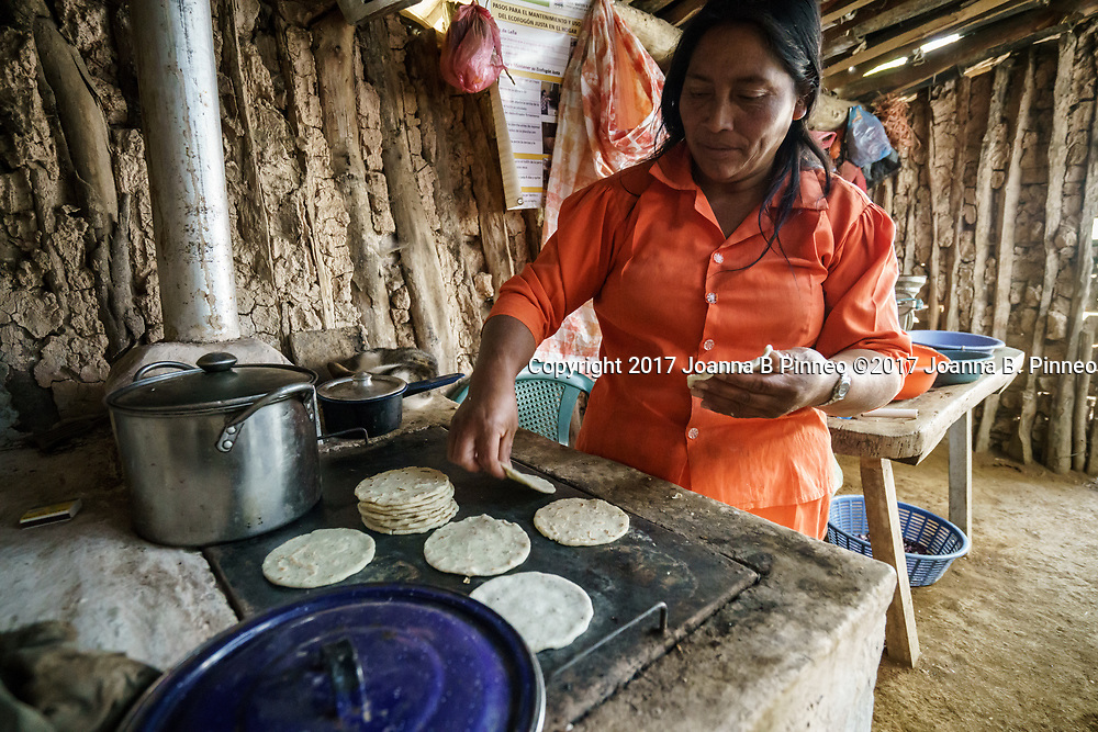 Bernada Mendez, age 48, making tortillas in her home in Monquecauga Honduras. She makes about 30 tortillas a day on her stove using about two pounds of corn meal. Bernarda is from the Lenca people of southwestern Honduras.Behind her is the new stove she got a year ago. She is using the new improved stove she received a year ago from participating in the Honduran Cookstove Study by Colorado State University. These stoves are part of a collaboration with Trees, Water, People based in Fort Collins, CO. Bernada Mendez, age 48, making tortillas in her home in Monquecauga Honduras. She makes about 30 tortillas a day on her stove using about two pounds of corn meal. Bernarda is from the Lenca people of southwestern Honduras.Behind her is the new stove she got a year ago. She is using the new improved stove she received a year ago from participating in the Honduran Cookstove Study by Colorado State University. These stoves are part of a collaboration with Trees, Water, People based in Fort Collins, CO.