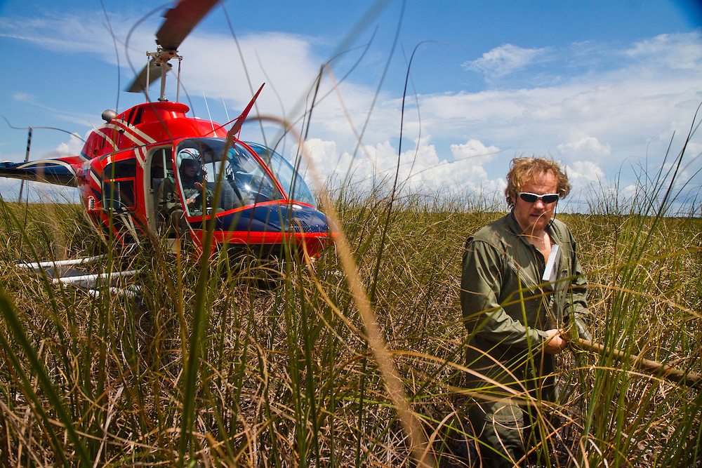 Everglades National Park Biologist Mark Parry travels via amphibious helicopter to alligator nests to survey the success (and failure) rates. Photo by James Branaman, Created while artist-in-residence at Everglades National Park.