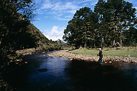 Fly fishing no Rio Canoas. Urubici, Santa Catarina, Brasil. / Fly fishing in Canoas River. Urubici, Santa Catarina, Brazil.