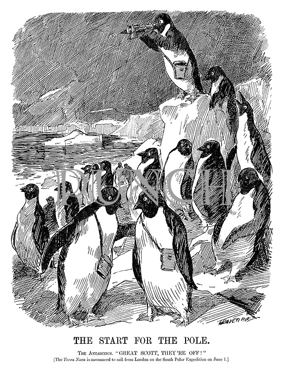 "The Start for the Pole. The Antarctics. ""Great Scott, they're off!"" [The Terra Nova is announced to sail from London on the South Polar Expedition on June 1.] (an Edwardian era cartoon of penguins looking with their binoculars while standing on the edge of an ice float)"