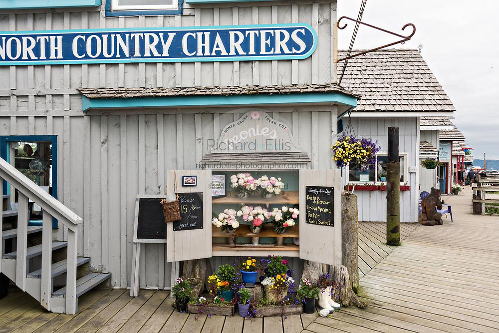 Cute flower shop selling locally grown peonies along the marsh boardwalk on Homer Spit on Kamishak Bay in Homer, Alaska.