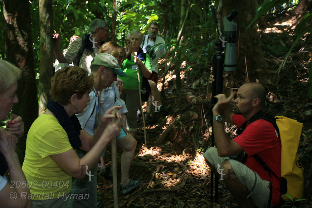 Guide lectures ecotourists as they pause on hike along trail in tropical rainforest of Corcovado Conservation Area, Osa Peninsula, Costa Rica.
