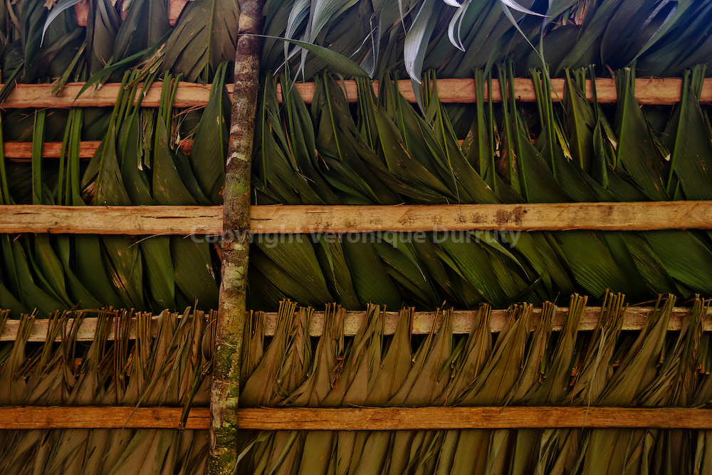 detail of a traditiona roof, Guaymi native reserve, Osa Peninsula, Costa Rica // Detail de toit traditionnel, Reserve indigene Guaymi, Peninsule de Osa, Costa Rica