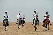 Endurance Al Shaqab 2014