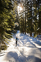 A woman snowshoeing through a forest on a sunny day.