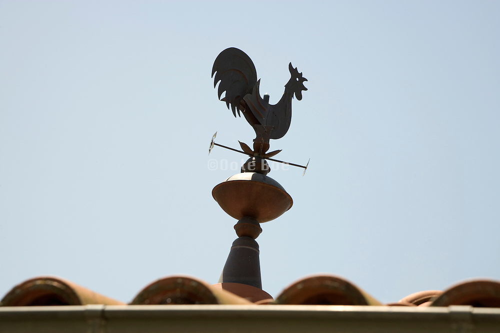 weather cock on the rooftop of a house