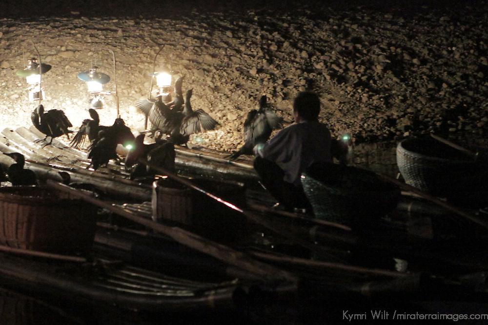 Asia, China, Guilin. Cormorants aid fishermen on the Li River.
