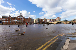 © Licensed to London News Pictures. 13/03/2019. York UK. The River Ouse has broken it's bank's today in York city centre causing flooding after heavy rainfall from storm Gareth. Photo credit: Andrew McCaren/LNP