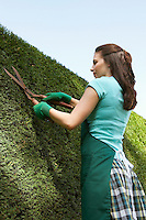 Woman Trimming Hedge