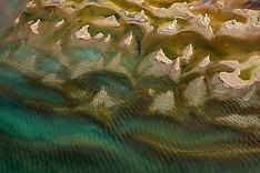 Littoral Lacs alpins du Nord