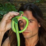 Steve Ludwin with a venemous Popes green Tree Viper one of his collection of venemous snakes. Steve has been injecting snake venom into himself for about 20 years.
