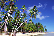 Mataiva, Tuamotu Islands, French Polynesia<br />