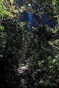 Sao Roque de Minas_MG, Brasil...Parque Nacional Serra da Canastra. A Cachoeira Casca dAnta e a maior queda do rio Sao Francisco e se forma quando rio deixa a Serra da Canastra. ..Serra da Canastra National Park. Casca dAnta watterfall, Sao Francisco river, in the Serra da Canastra. ..Foto: LEO DRUMOND / NITRO