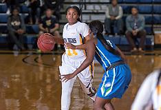 2015-16 A&T Women's Basketbal vs Florida Gulf Coast University