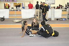 2010 Indoor/Outdoor Track Event Request