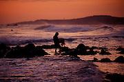 Netfishing, Poipu, Kauai, Hawaii