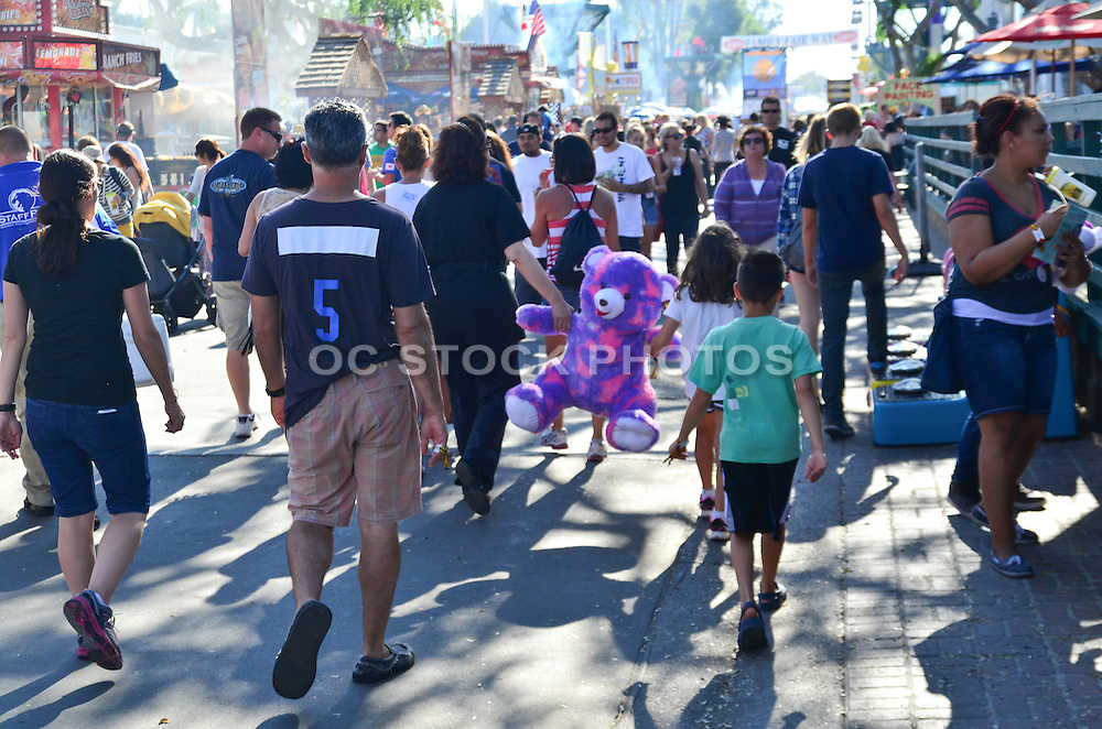 Lots of People at the Orange County Fair