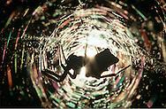 DEU, Deutschland: Spinnen, Opuntienspinne (Gattung: Cyrtophora) sitzt in ihrem Netz, Silhouette, Cuxhaven, Niedersachsen | DEU, Germany: Spiders, Tent-web spider (Genus: Cyrtophora) sitting in a web, silhouette, Cuxhaven, Lower Saxony |