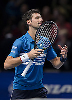Tennis - 2019 Nitto ATP Finals at The O2 - Day One<br /> <br /> Singles Group Bjorn Borg: Novak Djokovic vs. Matteo Berrettini<br /> <br /> Novak Djokovic (Serbia) shares the divine energy at the end of the match <br /> <br /> COLORSPORT/DANIEL BEARHAM
