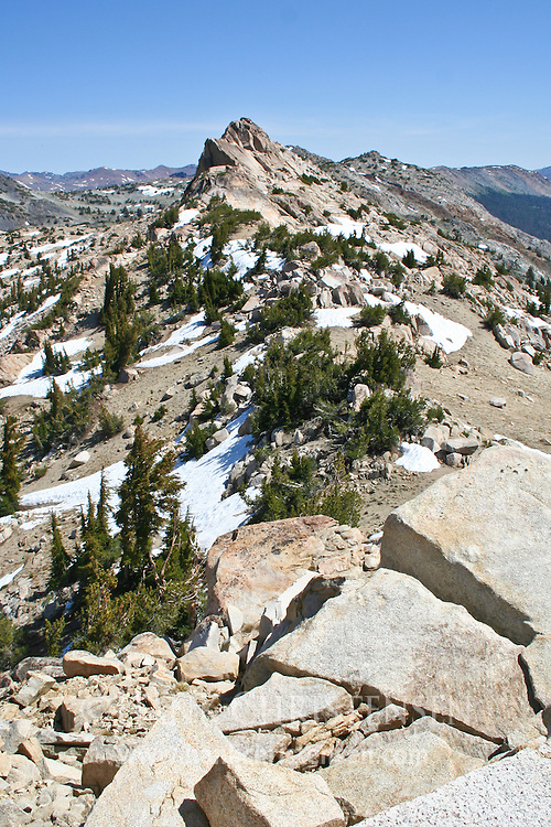 View from Kendrick Peak of northern wilderness, Yosemite National Park