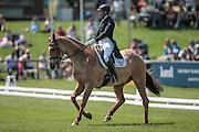 PINK GIN ridden by Aoife Clark (Ireland) at Bramham International Horse Trials 2016 at Bramham Park, Bramham, United Kingdom on 9 June 2016. Photo by Mark P Doherty.