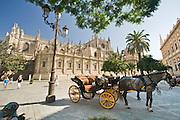 Sevilla 08.2007.fot Piotr Gesicki Sevilla Spain Andalucia Giralda gothic cathedral exterior on old town photo Piotr Gesicki