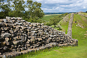 Tourist walking dog at Hadrian's Wall, blockstone construction boundary in Northumberland National Park at Walltown Crags, England