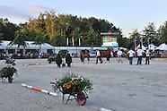2013-08-beervelde