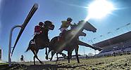 Kempton Races 020413