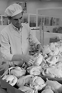 Preparing chickens at the cook/freeze plant at St Nicholas Hospital, Newcastle on Tyne. 13/02/1986.