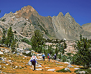 California, USA: Backpackers walk with poles beneath Virginia Peak, Yosemite National Park. Published in Sierra Magazine, Sierra Club Outings March/April 2003.