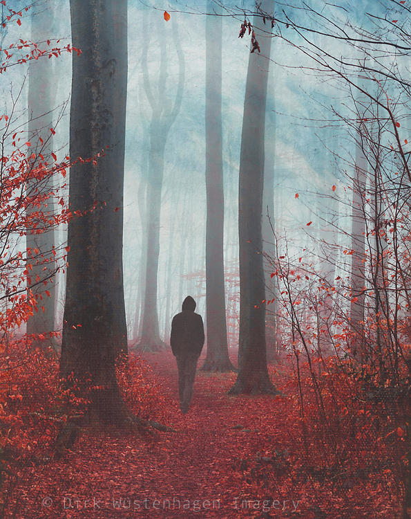 Man on forest path in late fall